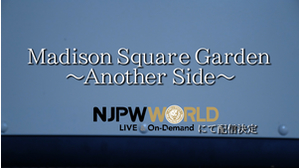 Madison Square Garden〜Another Side〜PV1画像