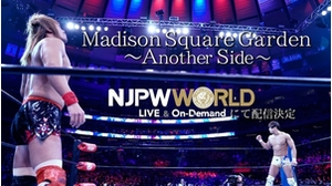 Madison Square Garden〜Another Side〜PV2画像